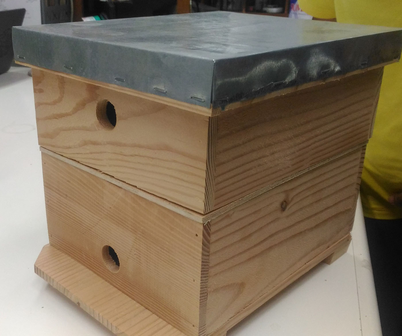POLLINATION HIVE. UPLB developed this bee hive for efficient and large-scale pollination. Photo by BBu
