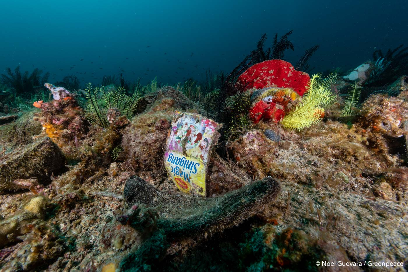 PLASTIC IN THE SEA. Even sachets of food seasoning can be found along the Verde Island Passage on March 7, 2019. Photo by Noel Guevara/Greenpeace