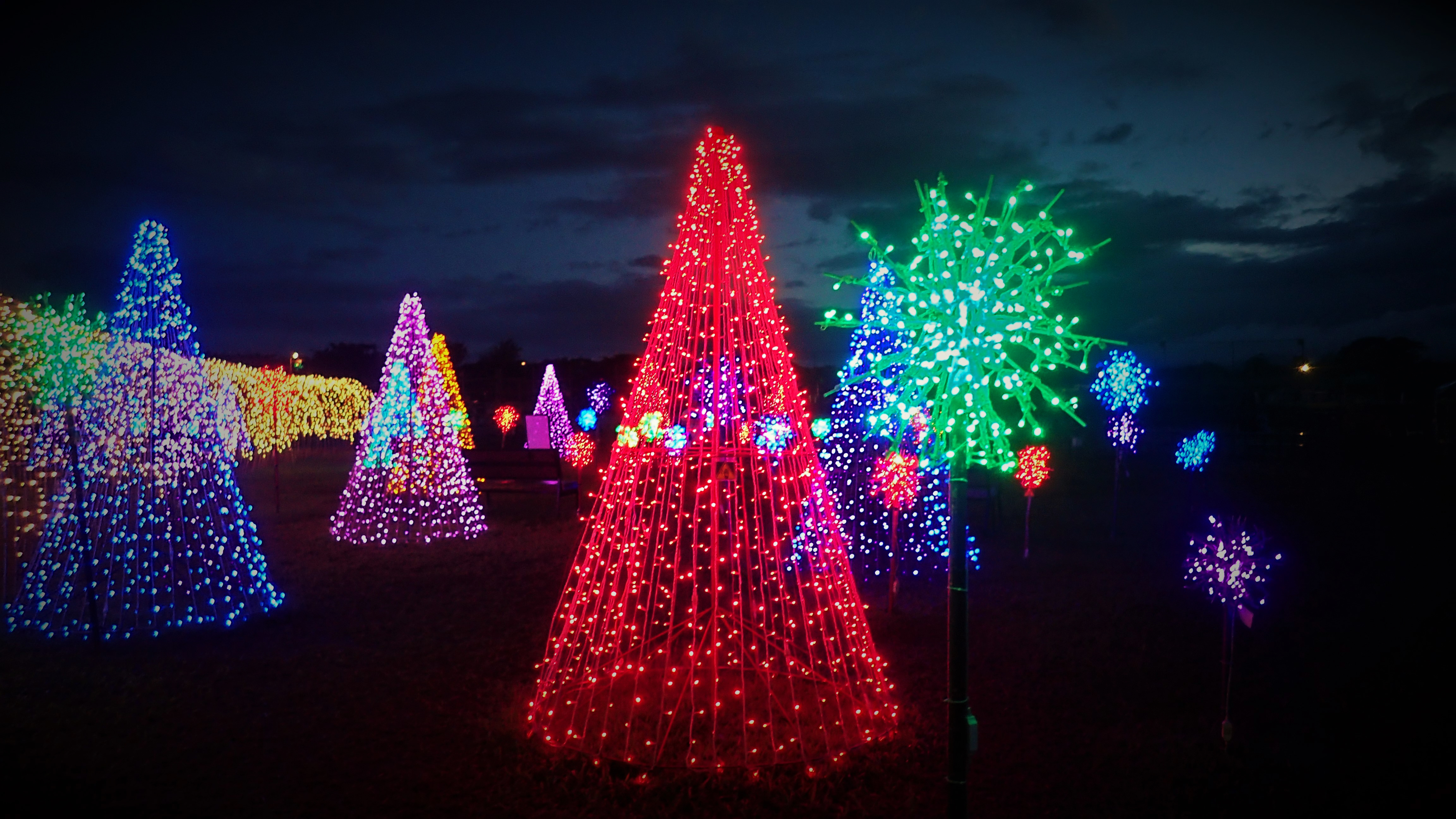 LOOK: 'Magical Field of Lights' in Nuvali is the perfect Christmas treat