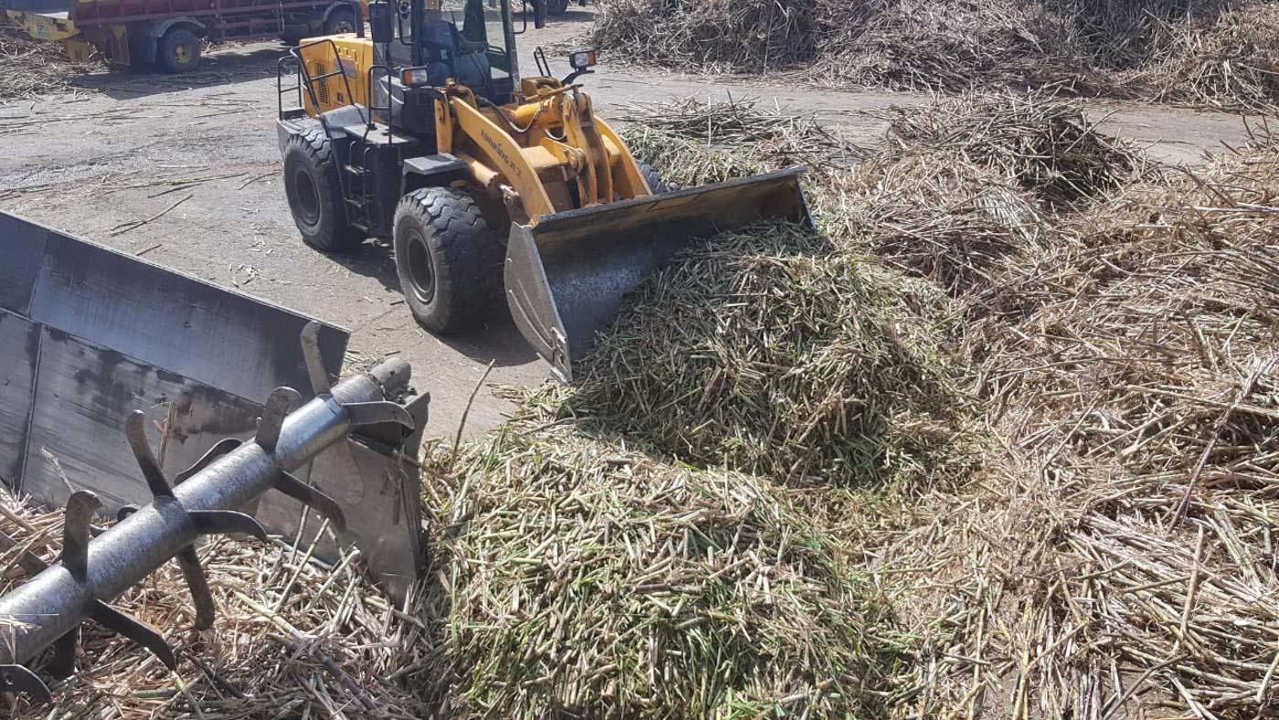 Next in line: Sugar import liberalization