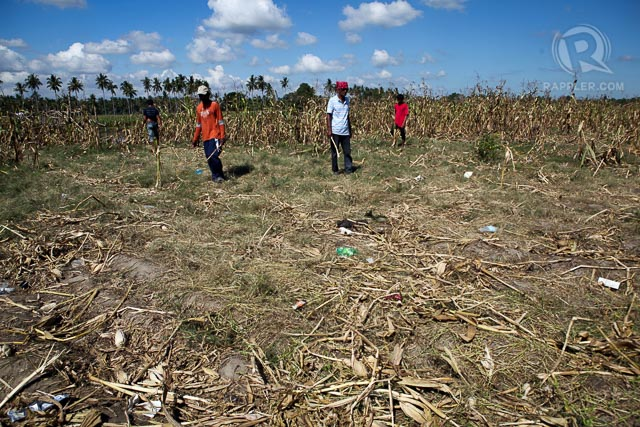 Residents survey January 28, 2015 the scene in Tukanalipao, Mamasapano Maguindanao where 44 SAF members died and 11 others wounded during a clashed with combined forces of MILF and BIFF.