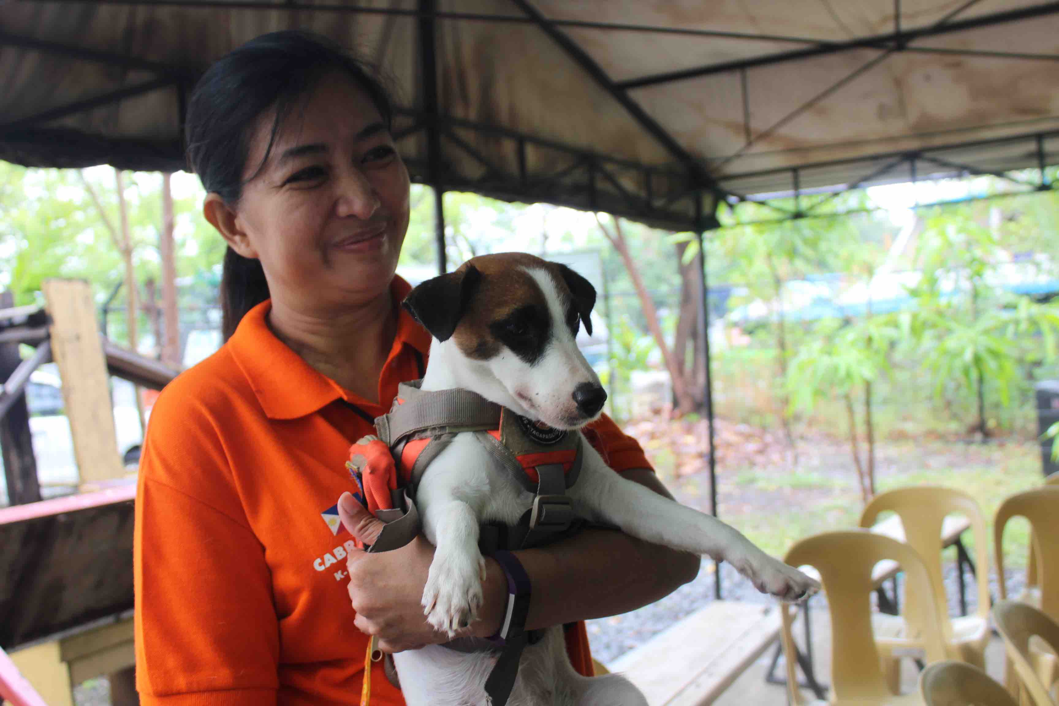WOMAN'S BEST FRIEND. The MMDA says any dog can be trained to be a search dog.  Photo  by Alexia Pantaleon/Rappler