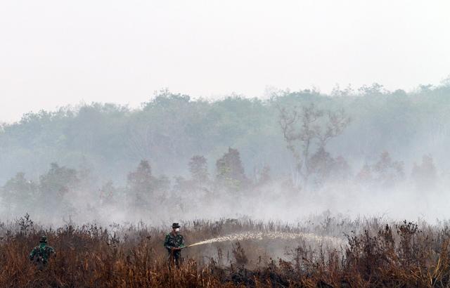 Anggota militer Indonesia sedang memadamkan api akibat kebakaran lahan di Pampangan, Ogan Komering Ilir, Provinsi Sumatera Selatan, Indonesia, 13 September 2015. Foto oleh Tamy Utary/EPA