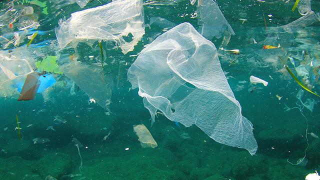 Single-use plastics, still the environment's number 1 enemy