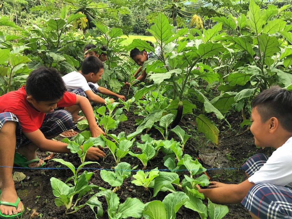 TEACHING AGRICULTURE. Students from Marinduque work on their school garden in one of AGREA's projects 'The Garden Classroom' that helps teach kids the value of growing their own food, eating healthy, camaraderie, love for the environment. Photo courtesy of AGREA