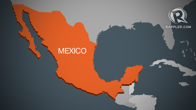 Mexican cartel leader's wife captured – government