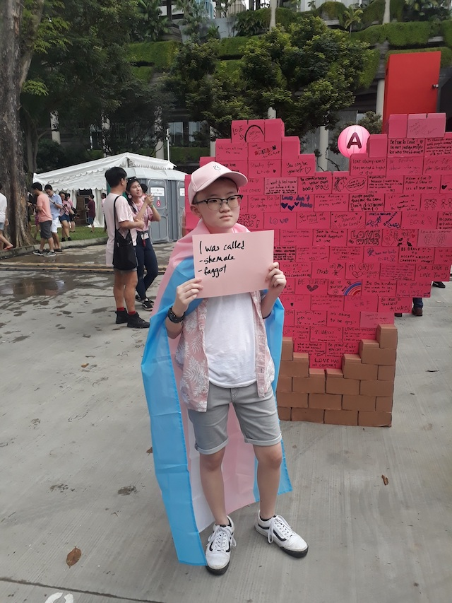 PROTESTER. Seeing this young Pink Dot participant was heartbreaking for the author. Photo by James Leong