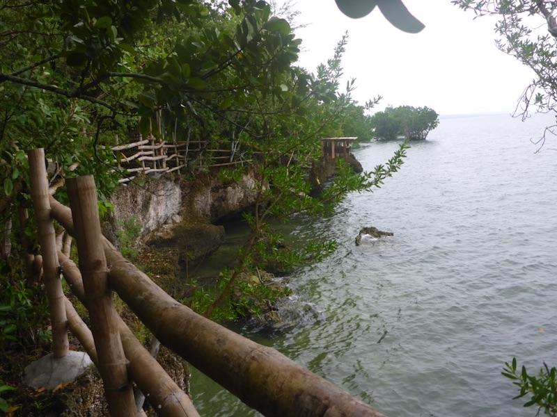 BARANGAY DAPDAP. The barangays of Esperanza and Dapap share a marine sanctuary and mangrove reserve.