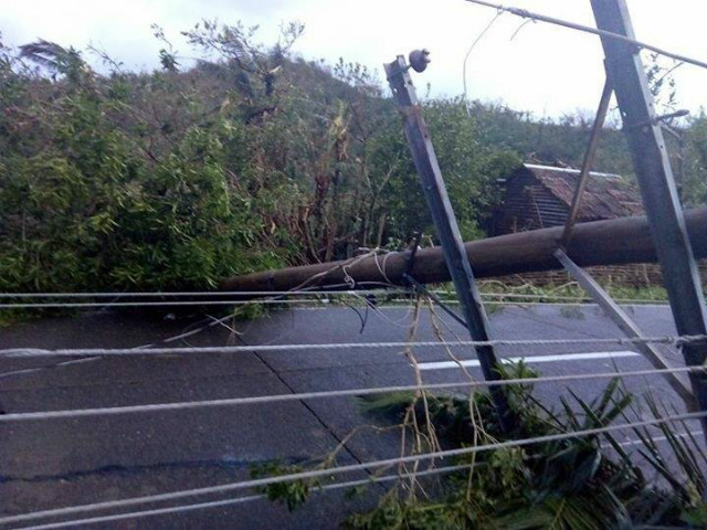 FALLEN POSTS. Catanduanes Governor Joseph Cua says major roads are also impassable in the area. Photo from Governor Joseph Cua