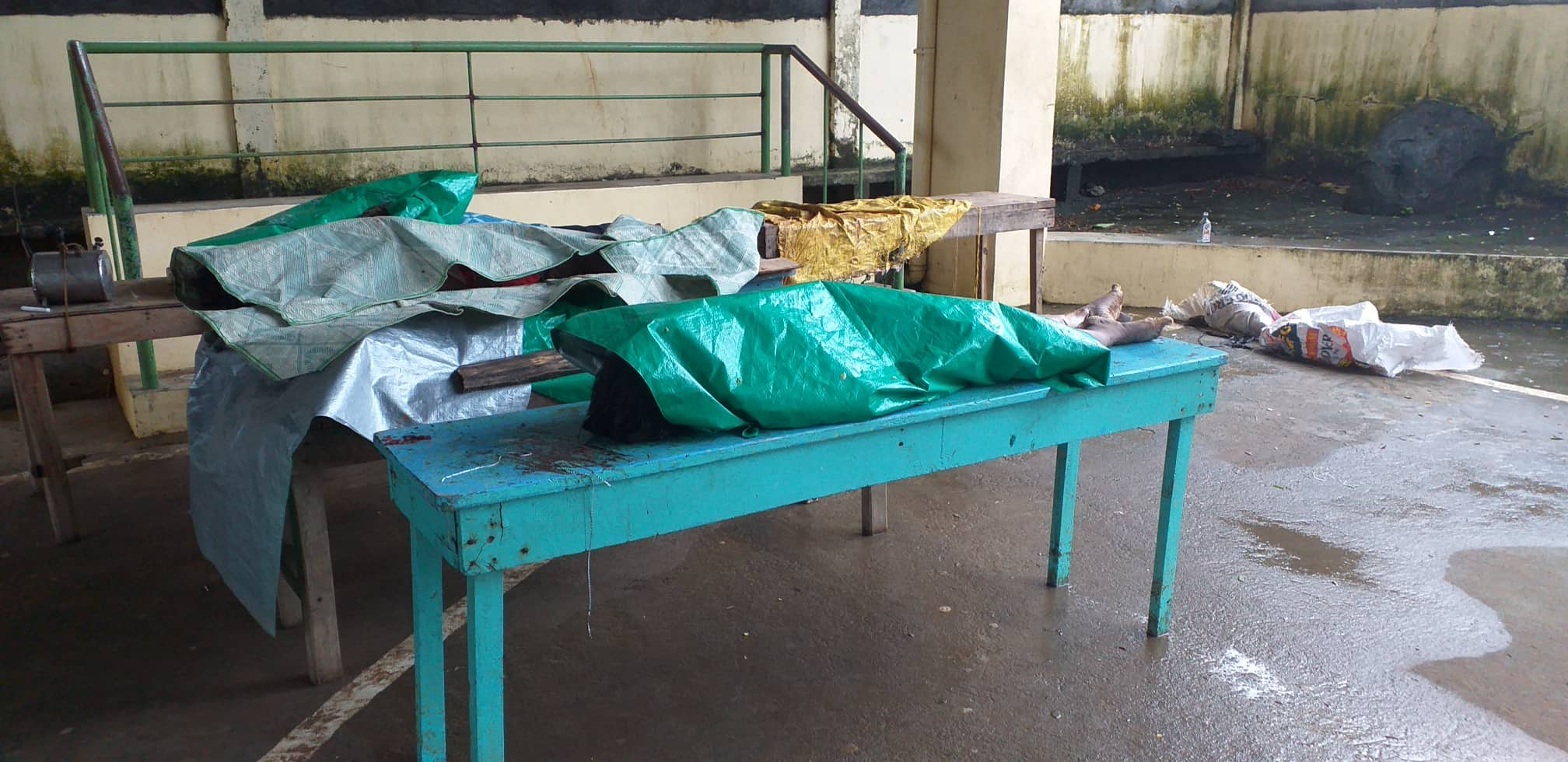 DEAD. Cadavers are positioned for identification in a community center in the province. Photo Courtesy of Philippine Red Cross - Camarines Sur