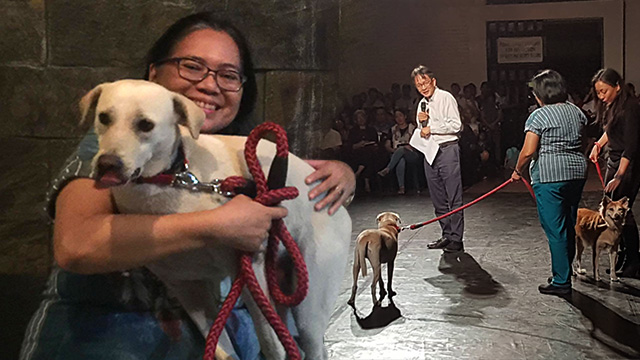DOG HEALERS. The University of the Philippines - Diliman launches its new program that will involve dogs around the campus in lightening the burden of people. Photos from Utak at Pusa Facebook page