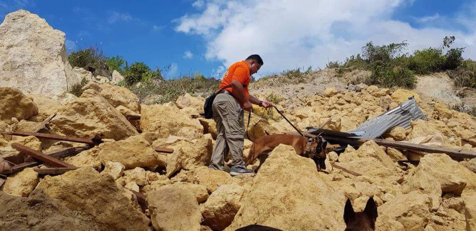 NAGA OPERATIONS. A K-9  and his handler search the landslide area in Naga, Cebu. Photo posted by MMDA K-9 Corps on Facebook