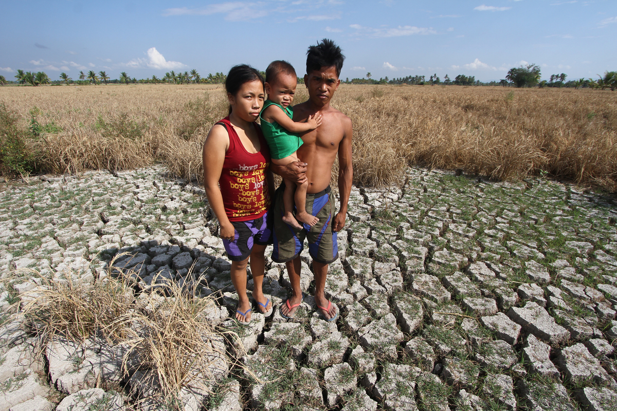 HUNGER. Archie Bello, a farmer from North Cotabato, has very few crops left to harvest from a 2-hectare rice field a month after PAGASA declared a weak El Niño in the Philippines. File photo by Karlos Manlupig/Greenpeace