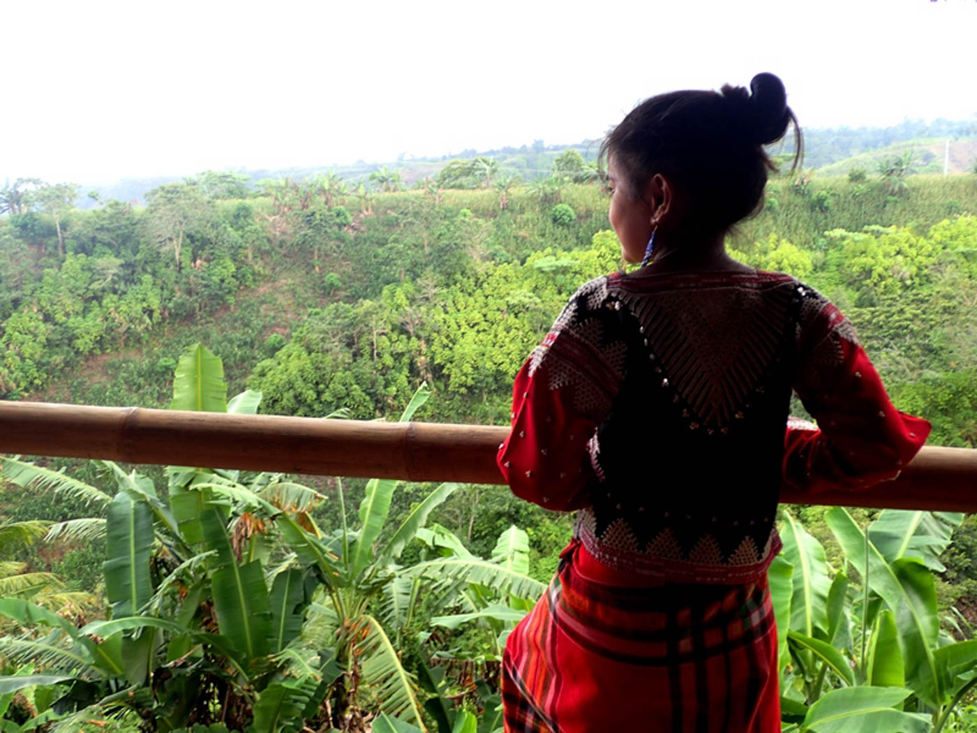 NATURE VIEW. The village has a panoramic view of lush forest, with mountains visible during clear days.