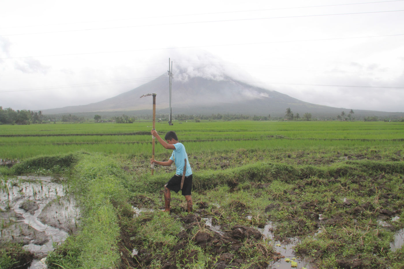 MAYON VOLCANO. Farmers in Camalig till their farmland while the Mayon Volcano remains on Alert Level 3. Photo by Rhaydz Barcia/Rappler