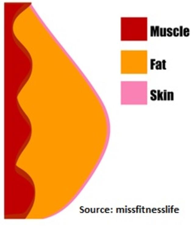 6 alasan mengapa perut kamu masih buncit