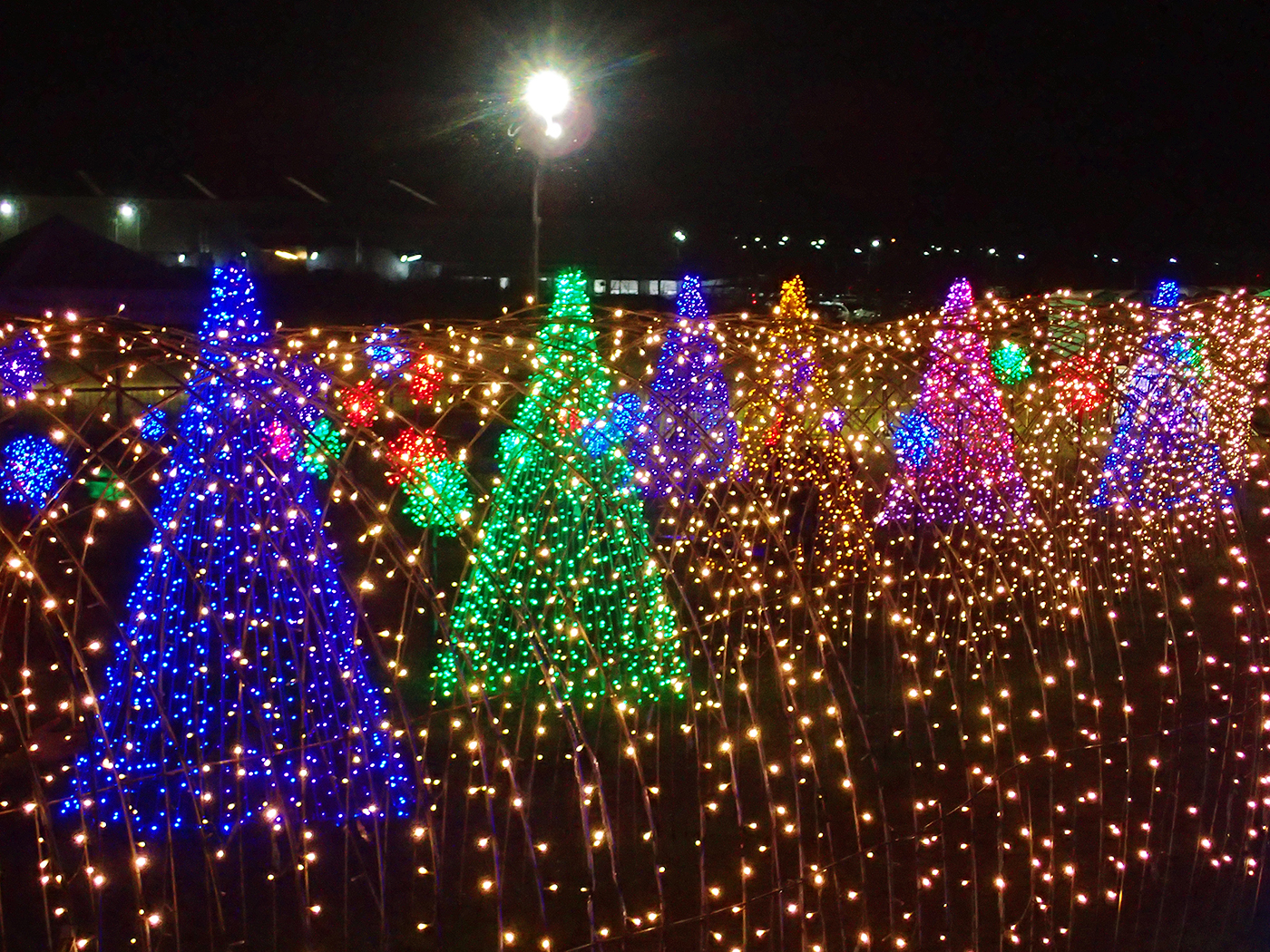Look Magical Field Of Lights In Nuvali Is The Perfect Christmas Treat