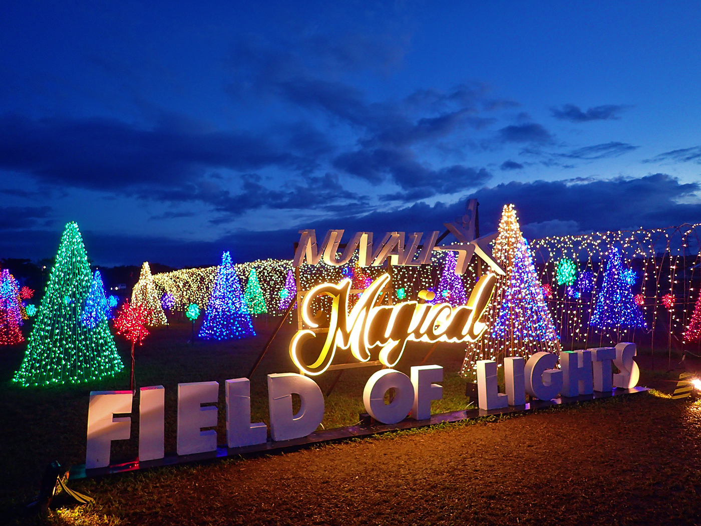 LOOK: 'Magical Field of Lights' in Nuvali is the perfect Christmas ...