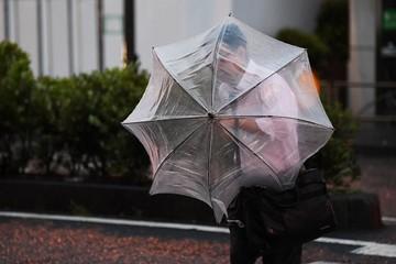 Powerful typhoon Faxai in direct hit on Tokyo