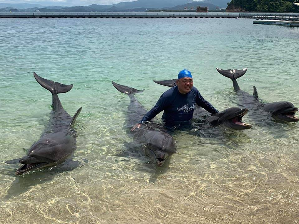 'Not leisure,' says Roque about swim with dolphins at Ocean Adventure - Rappler