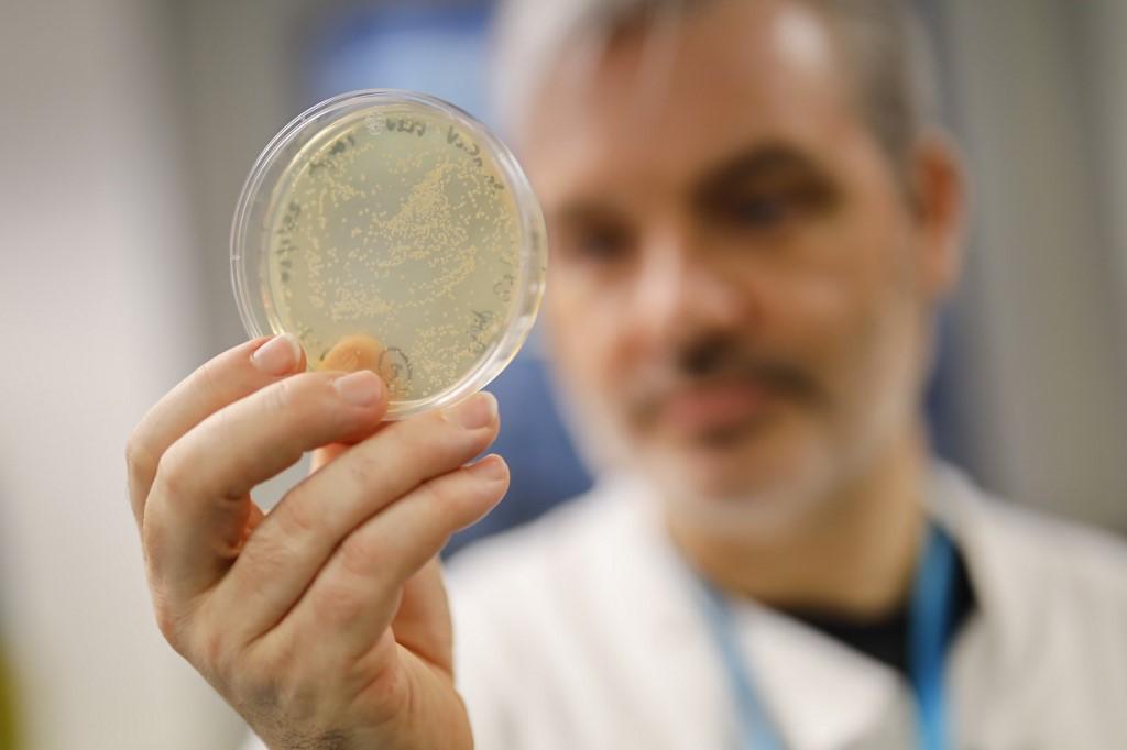 uk team tests novel coronavirus vaccine on mice