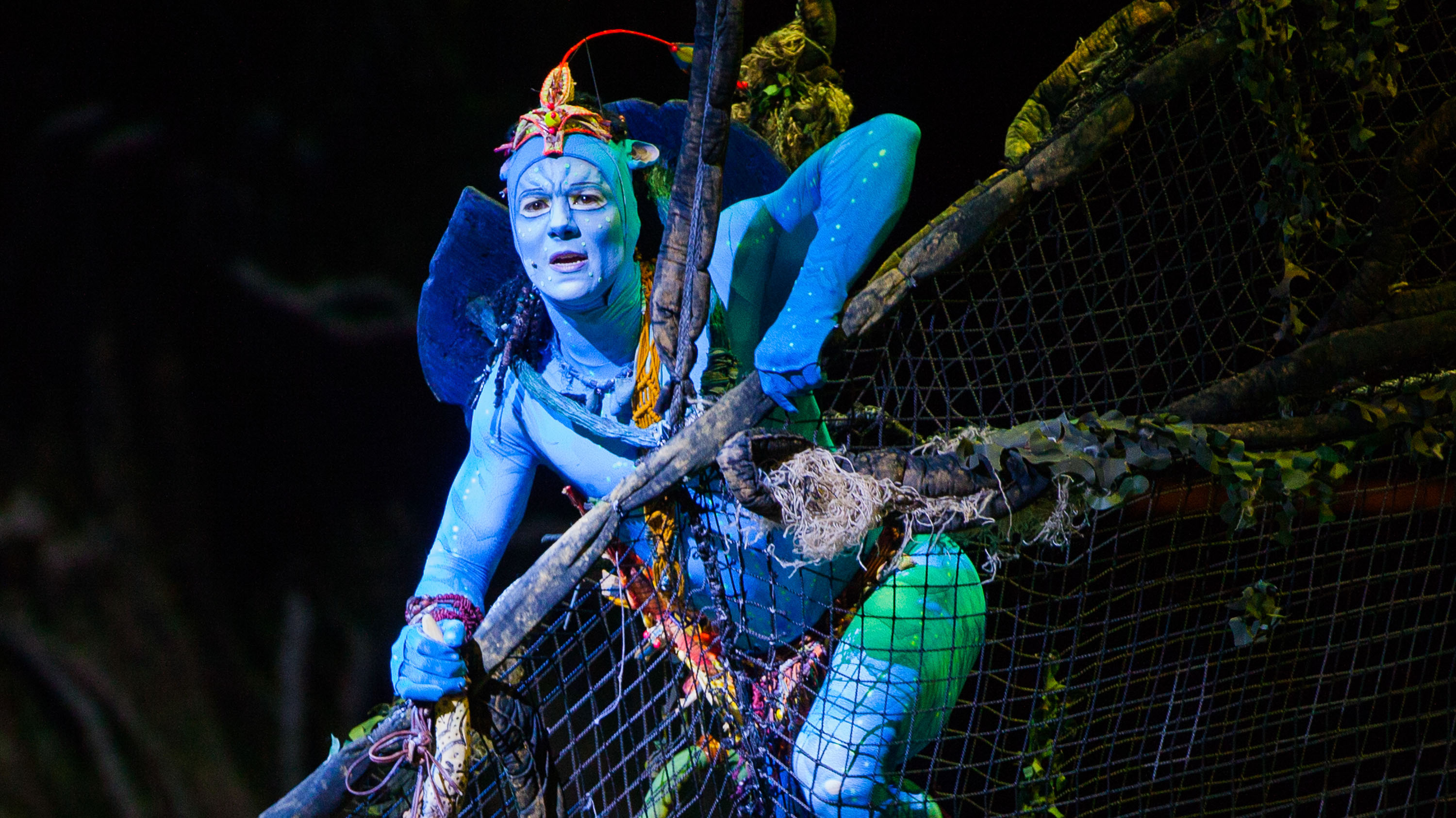 cirque du soleil harvard business school Executive summary cirque du soleil is an entertainment firm from montréal, canada and was founded in 1984 the company started as a small business and gradually grew into a successful organisation with an established presence in the entertainment industry.