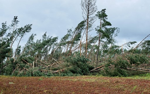 2 teen campers among 5 dead as storms ravage Poland