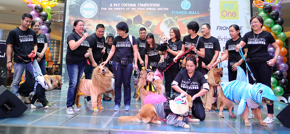 IN PHOTOS Meet u0027Yaya Dogu0027 u0027Heneral Tunau0027 more pets in amazing Halloween costumes  sc 1 st  Rappler & IN PHOTOS: Meet u0027Yaya Dogu0027 u0027Heneral Tunau0027 more pets in amazing ...
