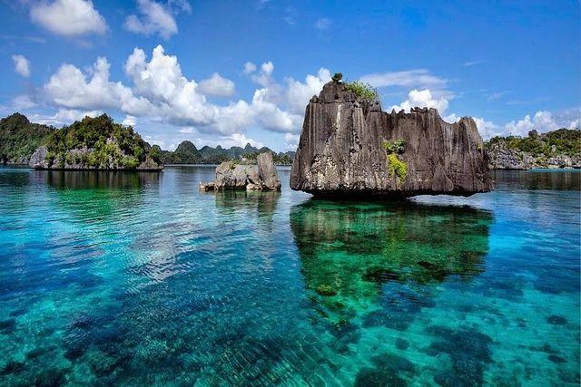 Pulau Misool menjadi jalur lintasan hewan-hewan besar seperti ikan paus dan gurita. Foto dari weird-tales.com/IDN Times