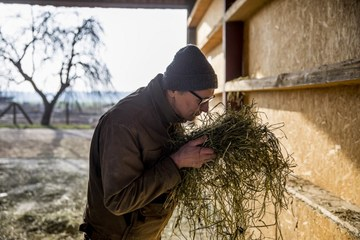 German farmers sue government over missed climate targets