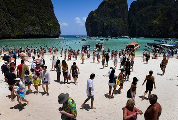 Paradise Regained Sharks Return To Thai Bay Popularized By