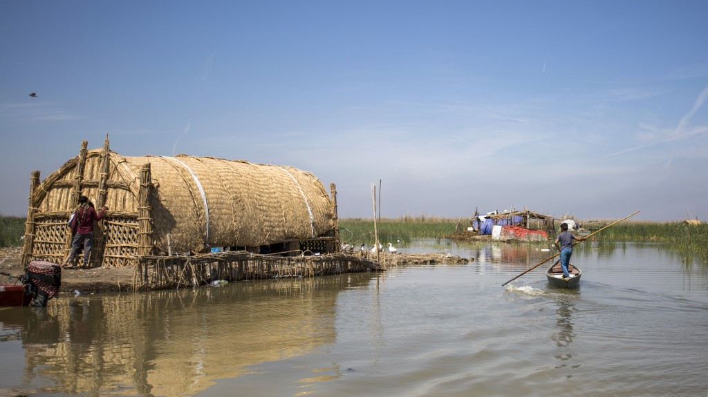 Iraqis use budding ecotourism to save marshes