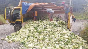 Gov't will offer loans to Cordillera vegetable farmers – Piñol