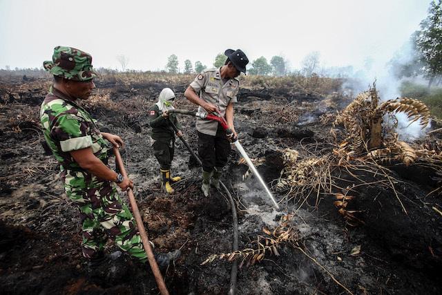 Kilas balik kinerja TNI dalam 3 tahun terakhir
