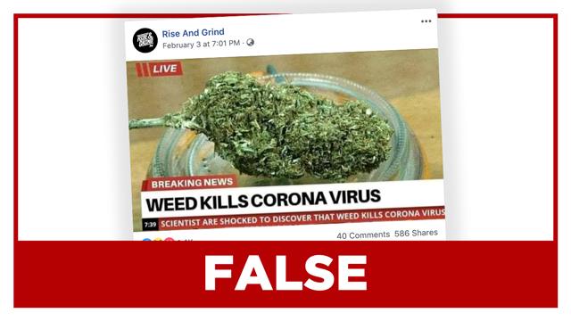 el-cannabis-mata-el-coronavirus