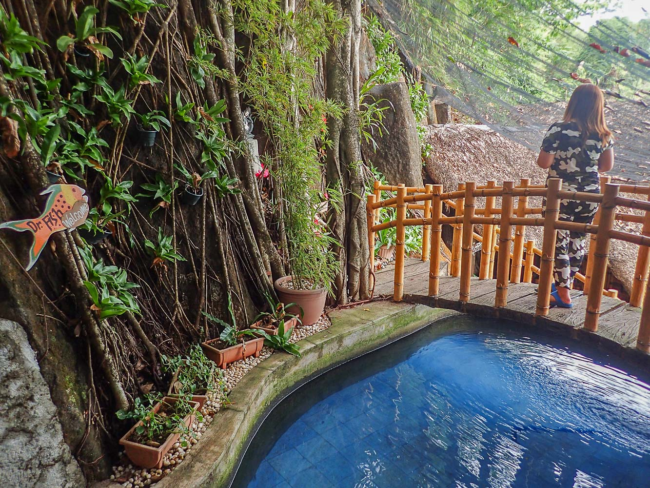 Luljetta\'s hanging gardens and spa – inside this getaway, 1 hour ...