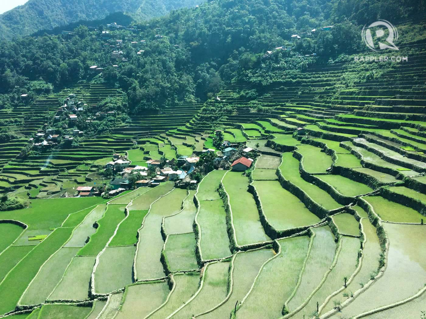 Visiting the ifugao rice terraces a few things to reflect on for What are terraces