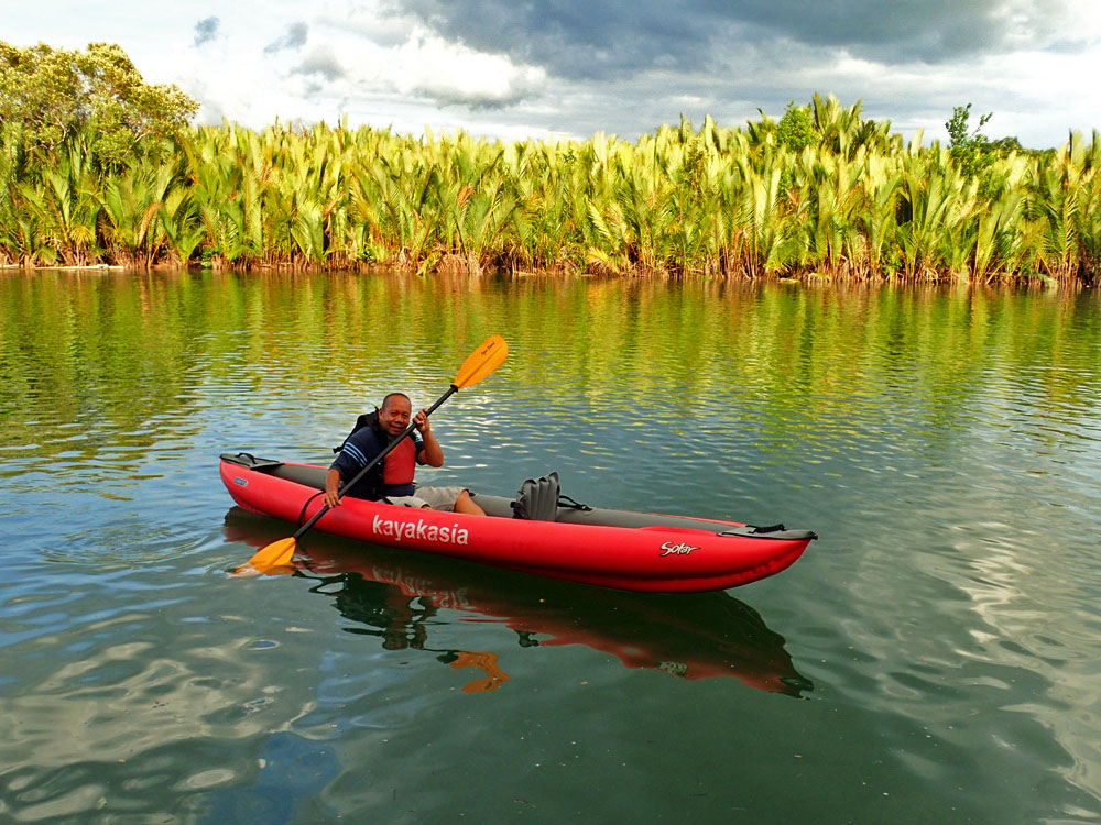 Mangroves and fireflies: Magical, eco-friendly kayak tour in