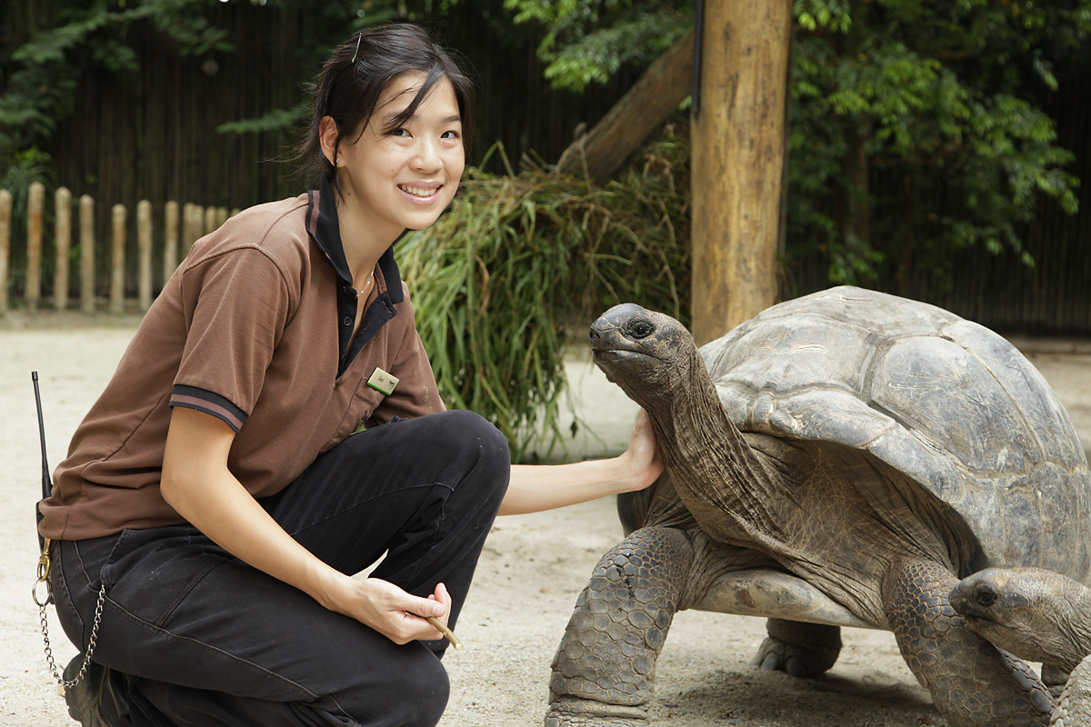 Sarah Chin: A zookeeper's tale of turning passion into action