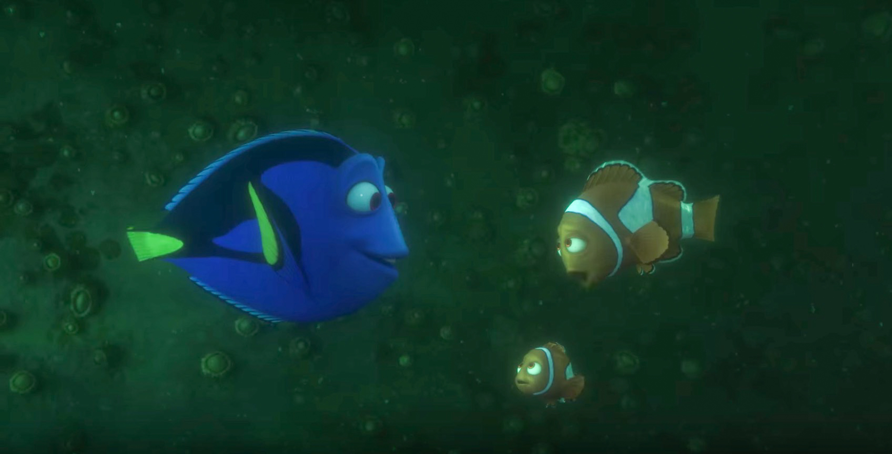 Dory News And Updates Rappler