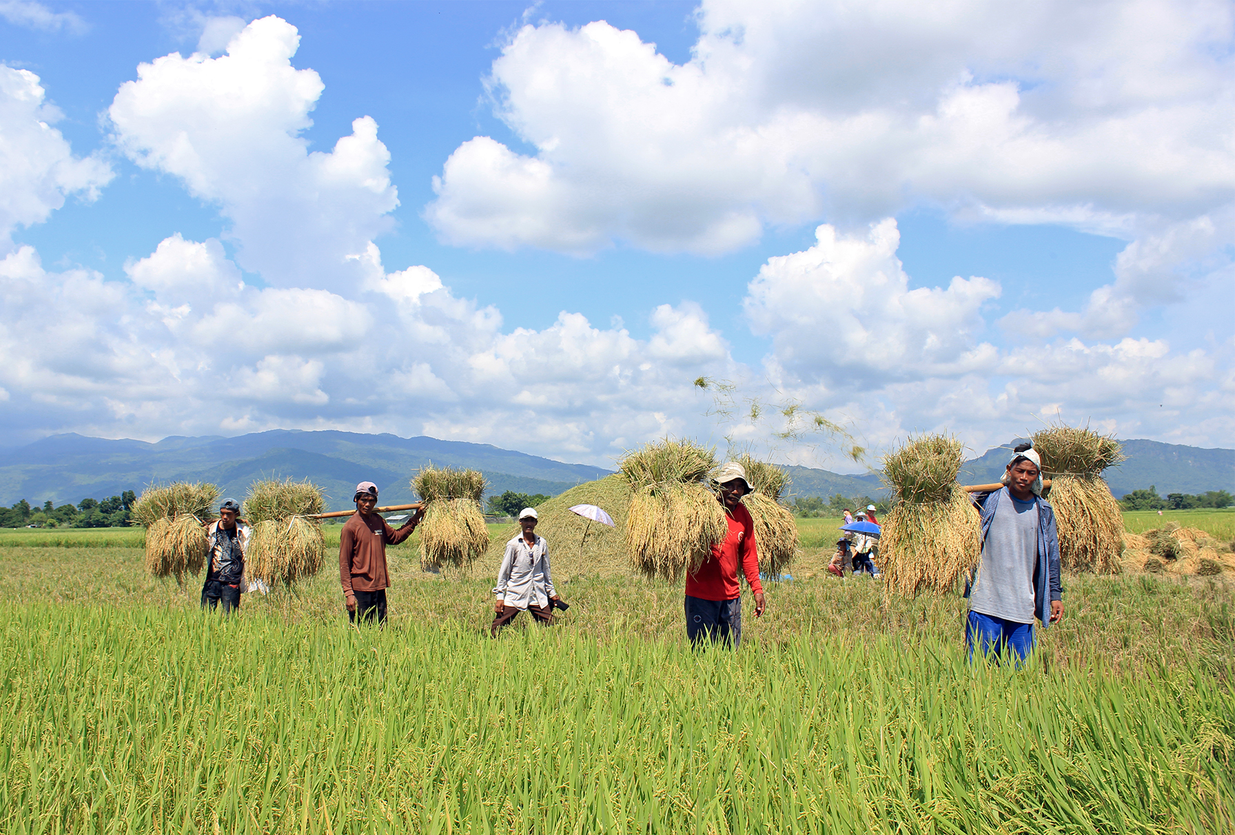 [OPINION] Is agrarian reform a dying issue?